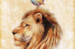 Afbeelding van een leeuw met een vogel op zijn hoofd. Kaj van der Plas